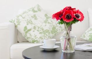 vase of red flowers in modern white living room - home decor